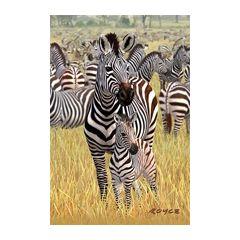 3d ansichtkaart - lenticulaire kaart - zebra