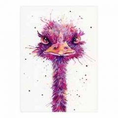 santoro eclectic cards -  struisvogel - mullerwenskaarten